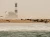 dsd_6392-ridotta-namibia-costa-deserto-del-namib
