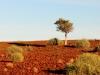 dsd_5750-ridotta-namibia-damaraland