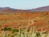dsd_5785-ridotta-namibia-damaraland