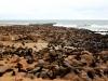 dsd_6101-ridotta-namibia-skeleton-coast