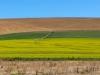 20150109_150050 exp con crop1  ridotta - 2015 S.S.Africa